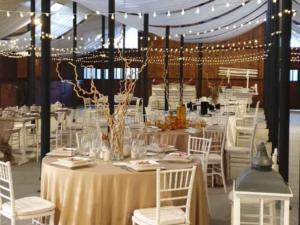 scuderie cicognani location per feste (1)